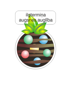 ilgtermina augliba.png