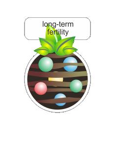long therm fertility.png