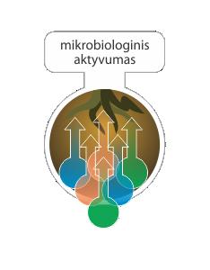 mikrobiologinis%20aktyvumas%20-%20Copy.p