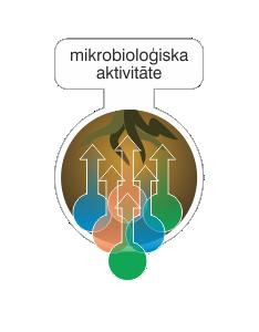 mikrobiologiska aktivatate.png