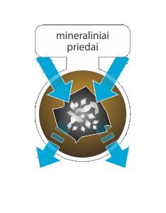 mineraliniai%20priedai%20-%20Copy.png